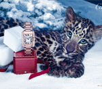 Cartier - Winter Tale