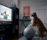 The Dog Strikes Back: 2012 Volkswagen Super Bowl Commercial