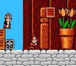 Chip n Dale Rescue Dangers (Squirrel Adventure)