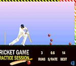 Cricket Game Крикет игра