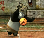 Kung Fu Hoops Madnes