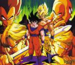 Dragon Ball Z Super Fight