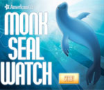 Monk Seal Watch