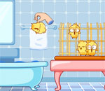 Chicken Bath