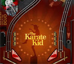 PinbaLL of The Karate Kid