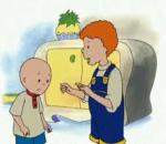 caillou learns to drive