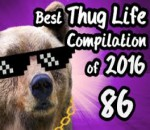 Best Thug Life Compilation of 2016 Part 86