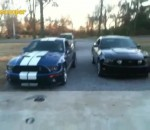 Ford Mustang Gt500 vs Ford Mustang Gt 5.0 - Звук
