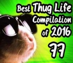 Best Thug Life Compilation of 2016 Part 77