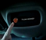 Suburban Trunk Monkey 1 Road Rage