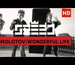 Seeed - Molotov / Wonderful Life (official Video)