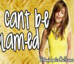 Miley Cyrus - Cant Be Tamed [lyrics]
