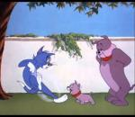 Tom And Jerry That's My Pup 1953
